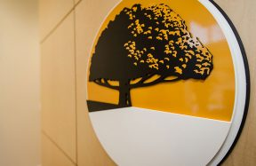 Dental Office_20 __Sunrise Dental | Chapel Hill | Durham | Raleigh | Cary, NC
